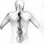 Kundalini, or prana, rising up the spine