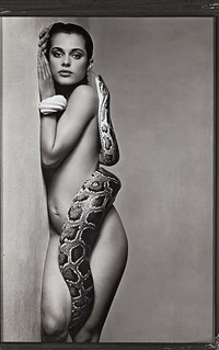 Snakes = Transformation
