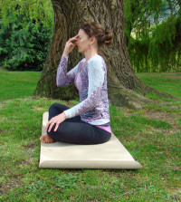 Alternate Nostril Breathing - a great beginning Pranayama.