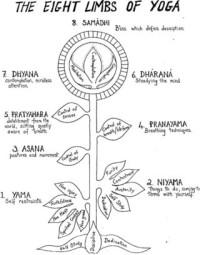 Eight limbs of yoga, as defined by Patanjali in Ashtanga Yoga (as opposed to Ashtanga Vinyasa Yoga as taught by Pattabhi Jois)