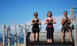 Three yogis on a log