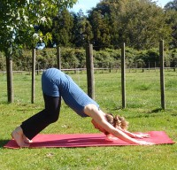 Keep the knees super-bent in downward dog to take all stress out of the lower back and let the pelvis tilt forward.