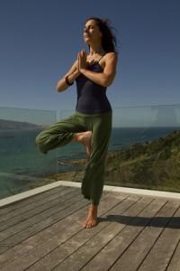 Marianne Elliott, Yoga Sangha teacher