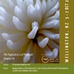 October 5 – 7: Wellington, Seminar, The Yoga Sutras of Patanjali Chapter III