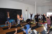 Yogic Wisdom Yoga Teacher Training